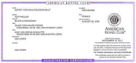 Esprit Vom Schutzlowen-Blut | AKC Rottweiler Registration Papers
