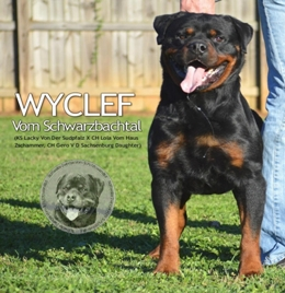 German Rottweiler Puppies Puppy Dog For Sale Breeder Breeders Atlanta Ga